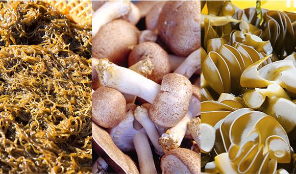 Fucoidan Ingredientes: Okinawa Mozuku, Agaricus, Mekabu