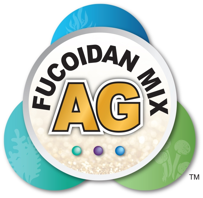 Active ingredients: Fucoidan MIX AG